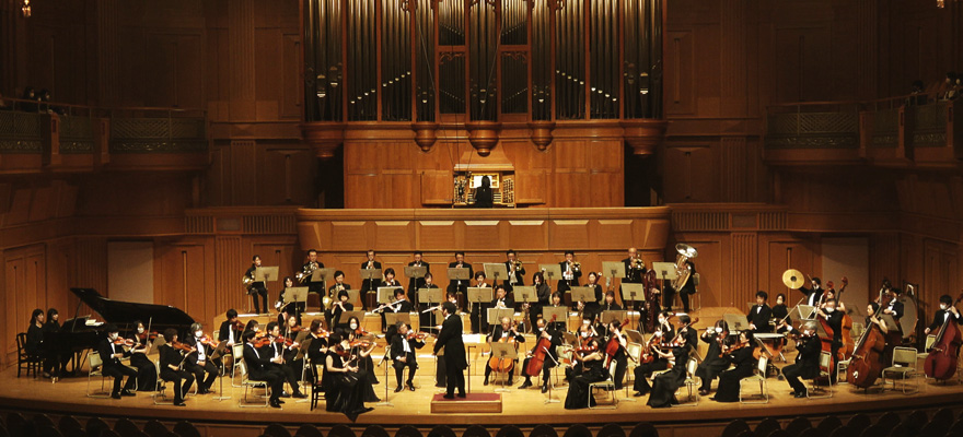 The St. Martin Orchestra